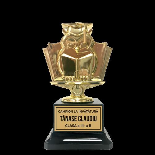 Trofeu Scolar pentru copii