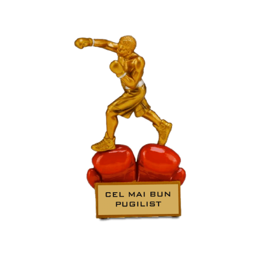 "Trofeu ""Cel mai bun boxer"""