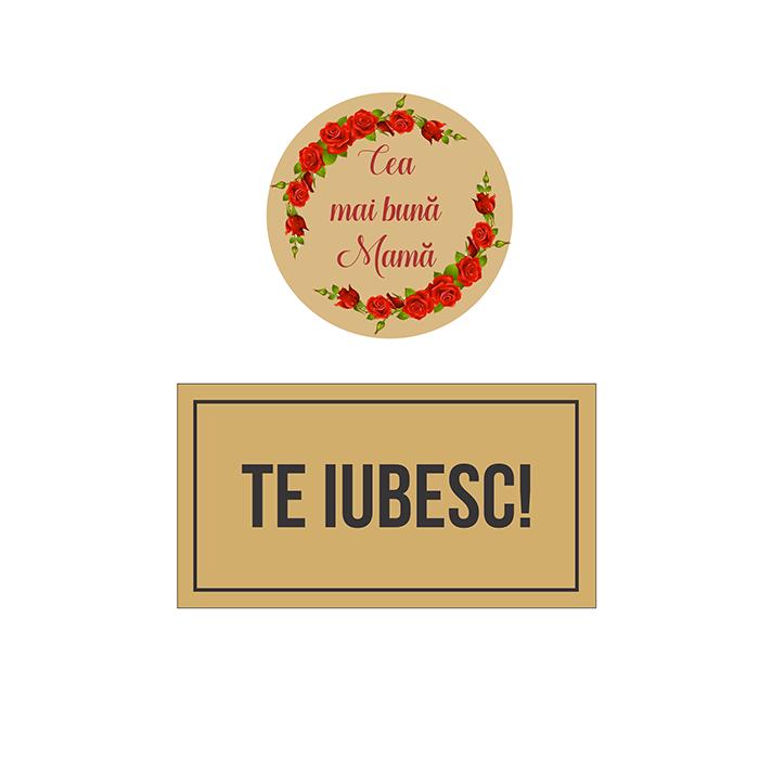 """Trofeu """"Cea mai buna Mama"""""""